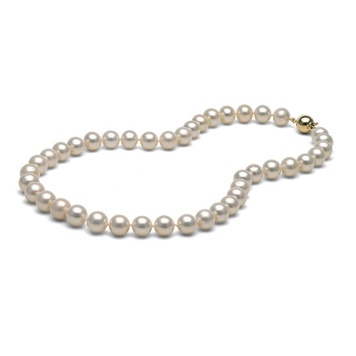 AA+ Quality White Freshwater Necklace, 9.5-10.5mm