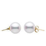White Freshwater Gem Grade Stud Earrings, 6.5-11.0mm