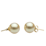 AAA Quality Golden South Sea Stud Earrings, 8.0-15.0mm