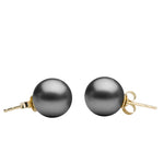 Tahitian Stud Earrings, 8.0-13.0mm