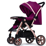 Wangbaby High Landscape Stoller ***FREE INSURED SHIPPING.