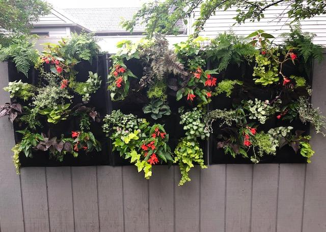 12 Pocket Outdoor Vertical Living Wall Planter - All Therapeutic