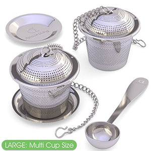 Loose Leaf Tea Infuser (Set of 2) with Tea Scoop and Drip Tray - All Therapeutic