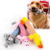 Image of Dog Cute Chew Toys - DAX ACCESSORIES