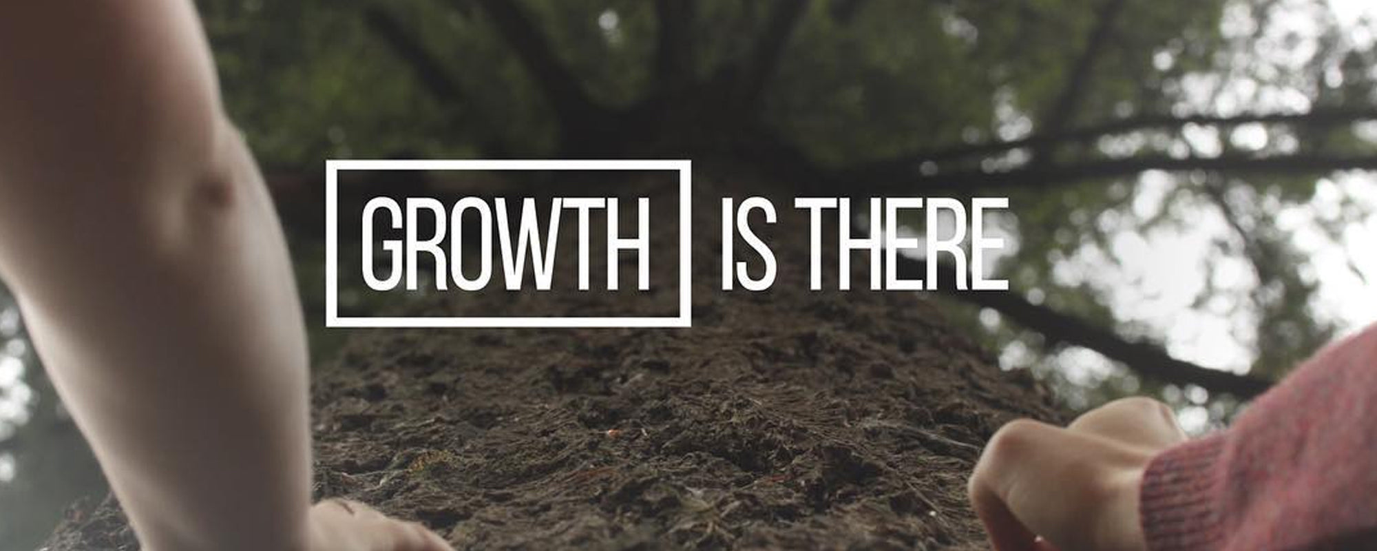 Growth is There - Part 2