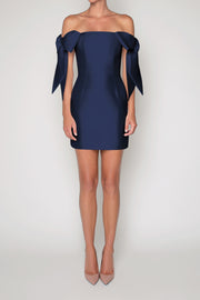 Isabella Silk and Wool Mini Dress