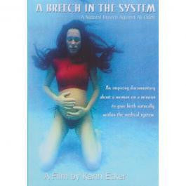 A Breech in the System DVD