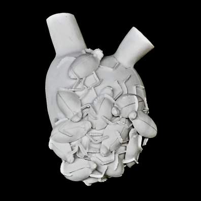 Insembrai Anatomical Vase