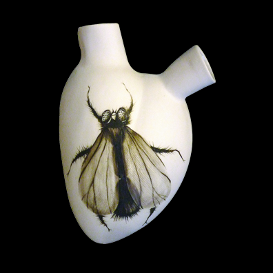 Fly Anatomical Vase
