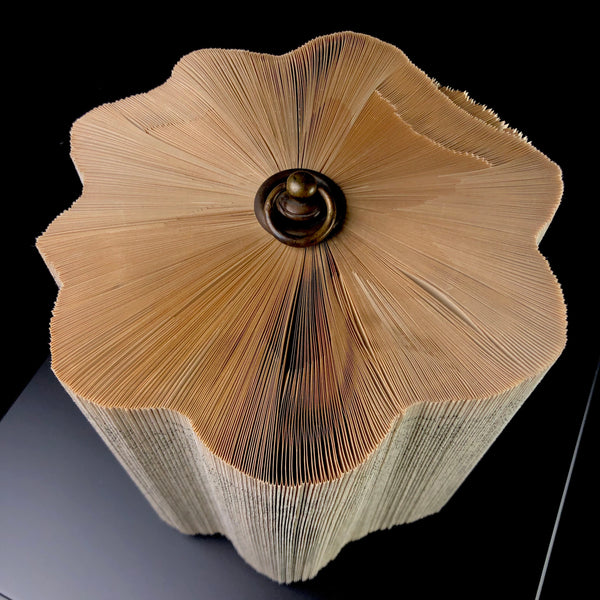 Folded Book- Log