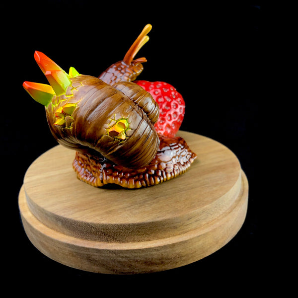 Snail with Strawberry