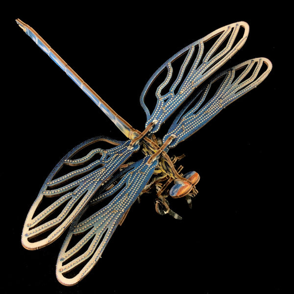 Dragonfly Puzzle Model