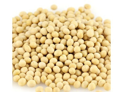 Edible Soybeans