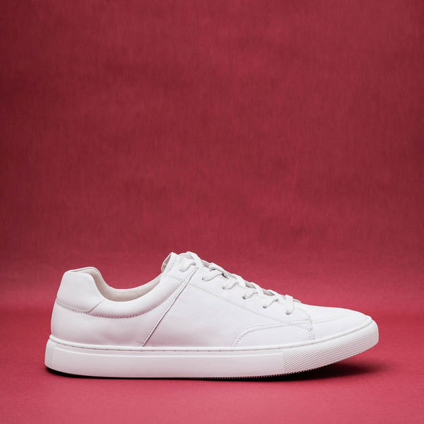 Avesta White Leather Sneakers