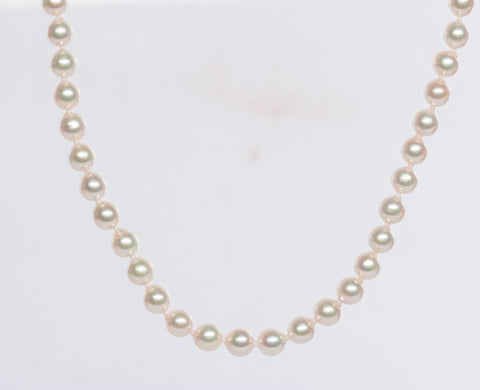 "18"" White Pearl Necklace w/ 14K Yellow Gold Clasp"