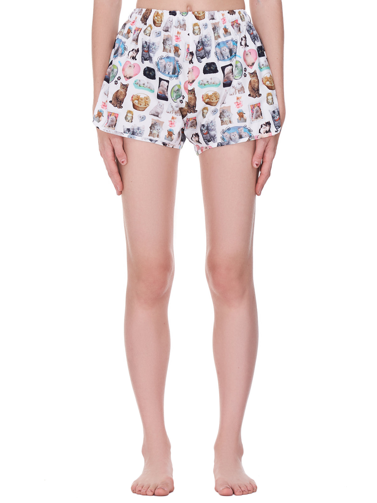 Cat Print Lounge Shorts (016-CATS)