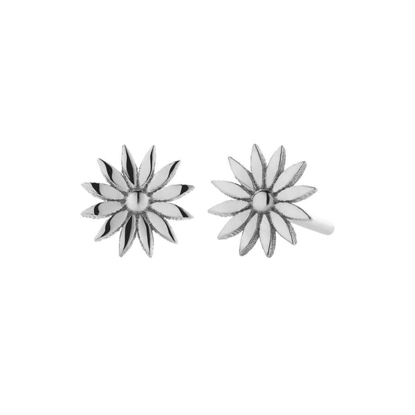 Dazed Studs-Meadowlark-The Colab Store