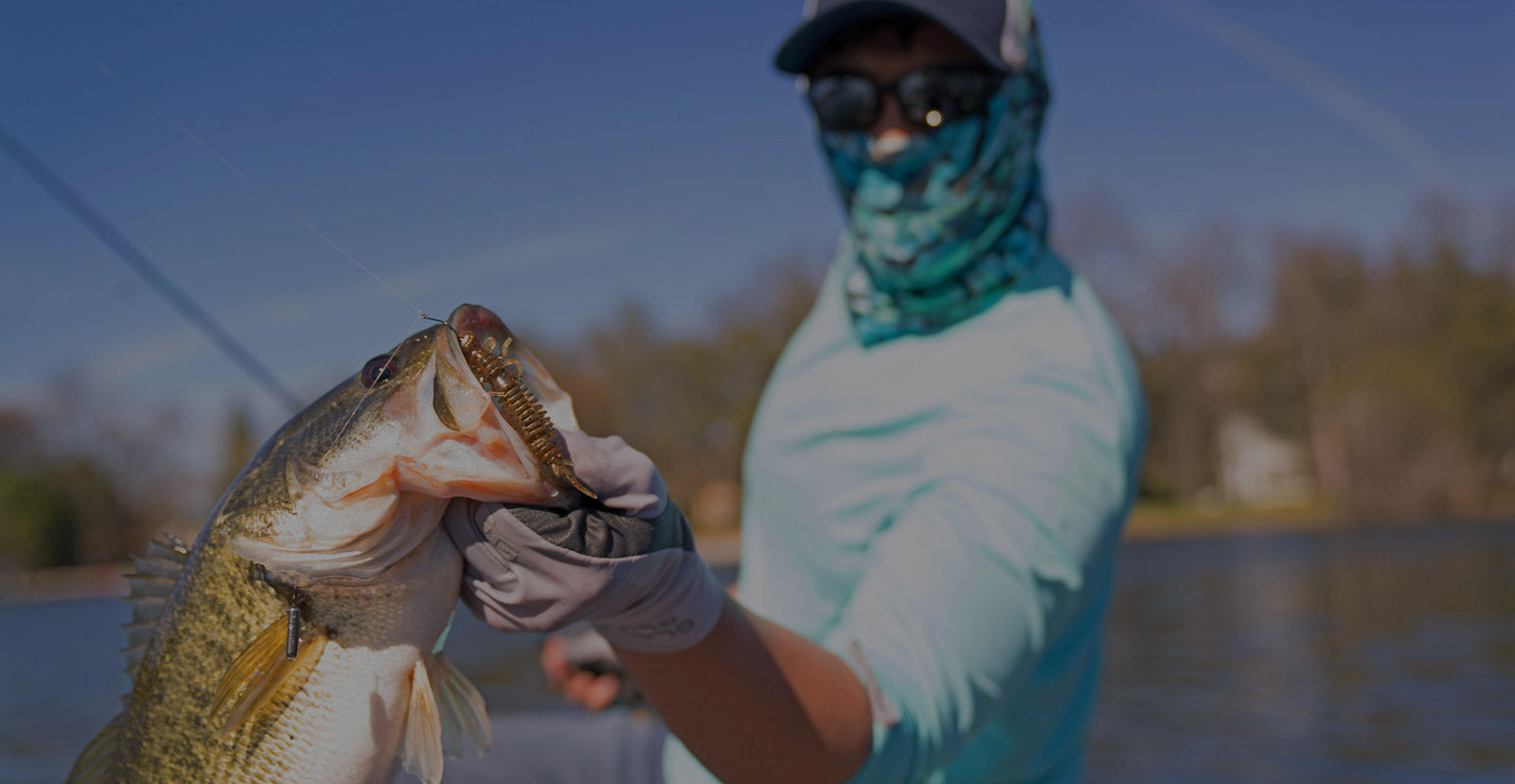 The Best Soft Plastic Baits and Tackle for The Best Price