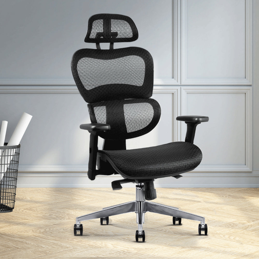 Office Chairs - Evopia