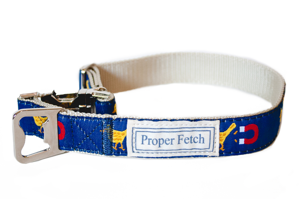 preppy chick magnet dog collar with bottle opener
