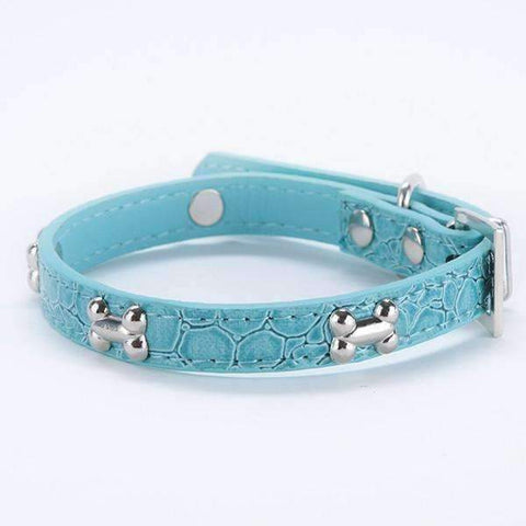 Bone Buckle Leather Collar
