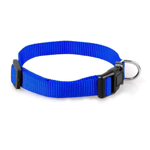 Nylon Puppin Collar 4 Colors