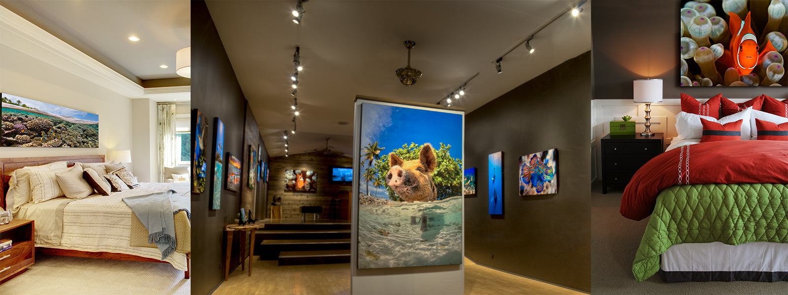 Maui Gallery In home Cesere Brothers Photography Metal Aluminum