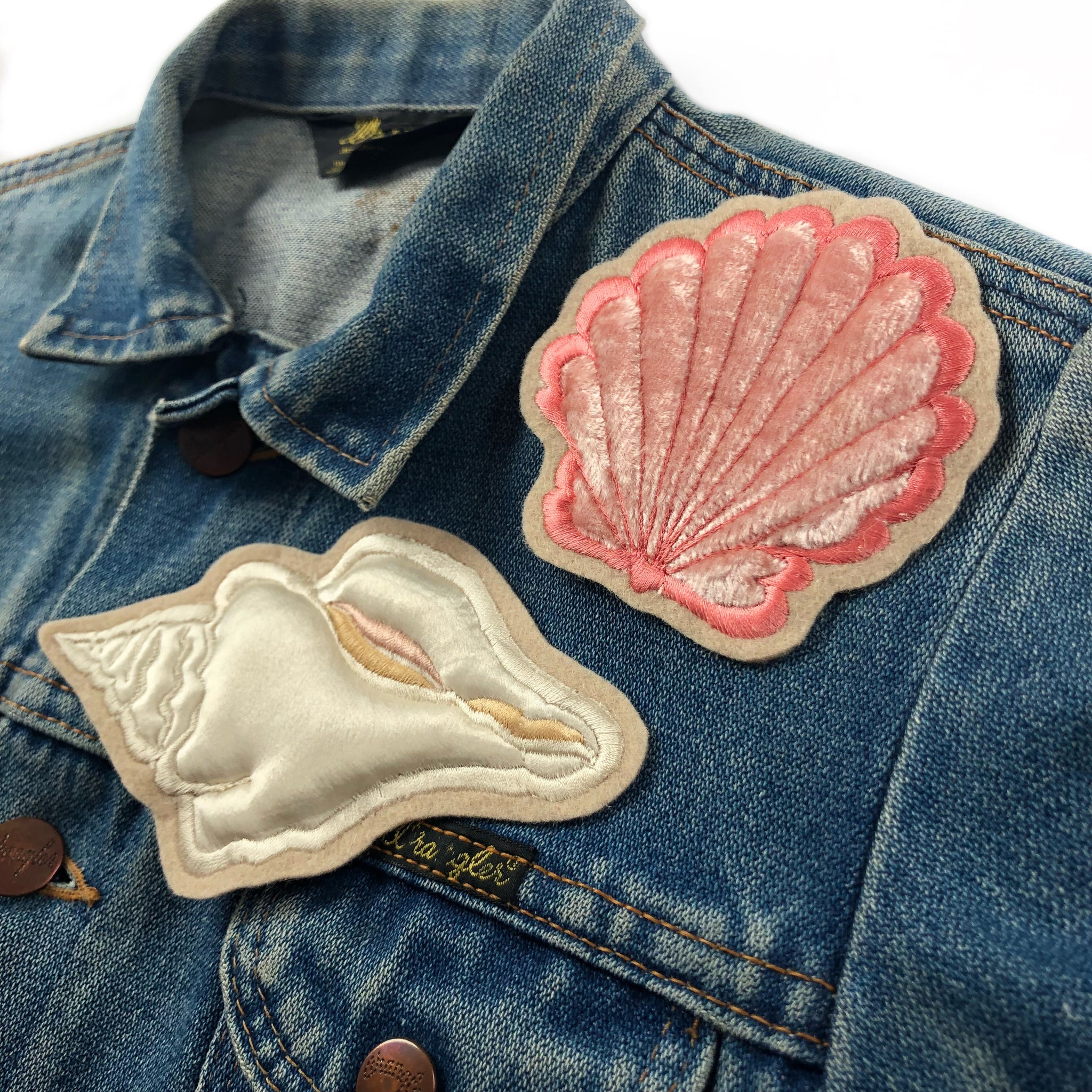 SS18 Padded Conch Shell . Limited Edition 042