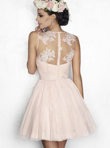 Pale Pink See Through Lace Cheap Short Homecoming Dresses Online, CM623