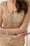 Long Sleeves Heavily Beaded See Through Mermaid Evening Prom Dresses, Evening Party Prom Dresses, 12096