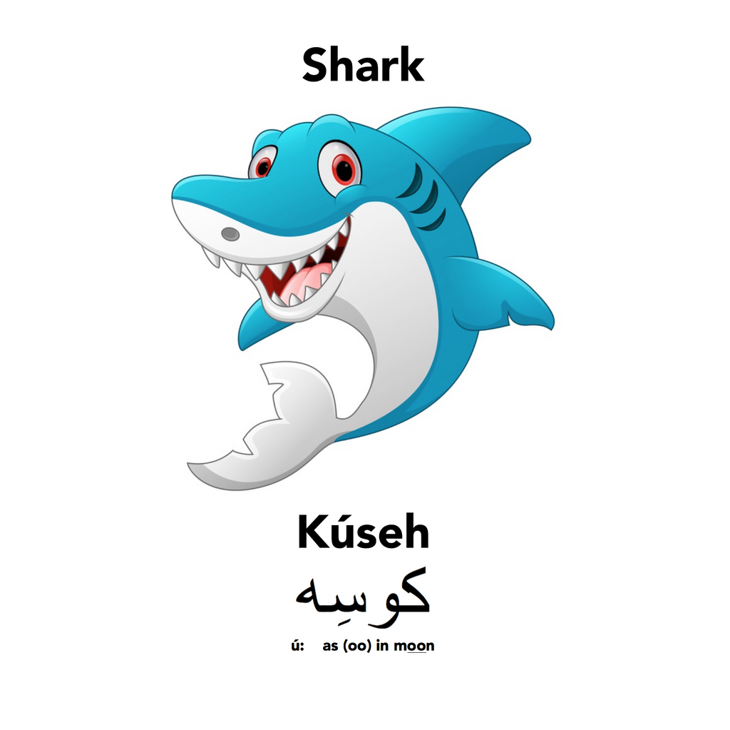 Sharks under the Sea- Englisi Farsi