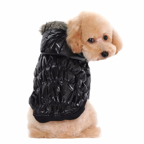 Warm Jackets for dogs and cats