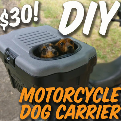 HOMEMADE MOTORCYCLE DOG CARRIER (UNDER $30)