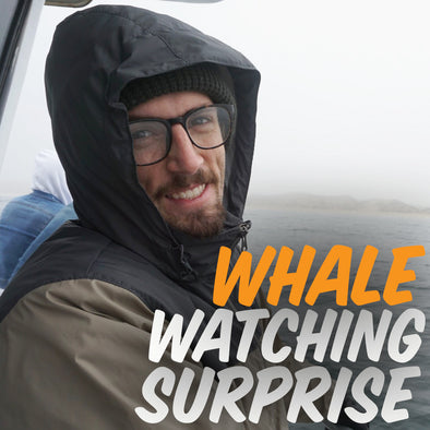 WHALE WATCHING SURPRISE