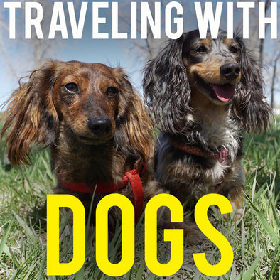 RVING WITH DOGS - TRAVELING FULL TIME