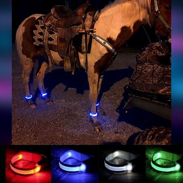 led lights for horseshoe pits
