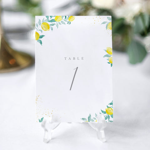 'Sorrento' Table Numbers