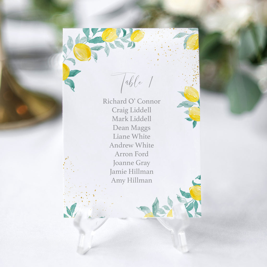 seating chart Italian wedding