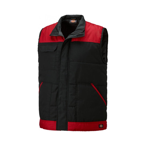 Dickies Everyday Body Warmer-ShoeShoeBeDo