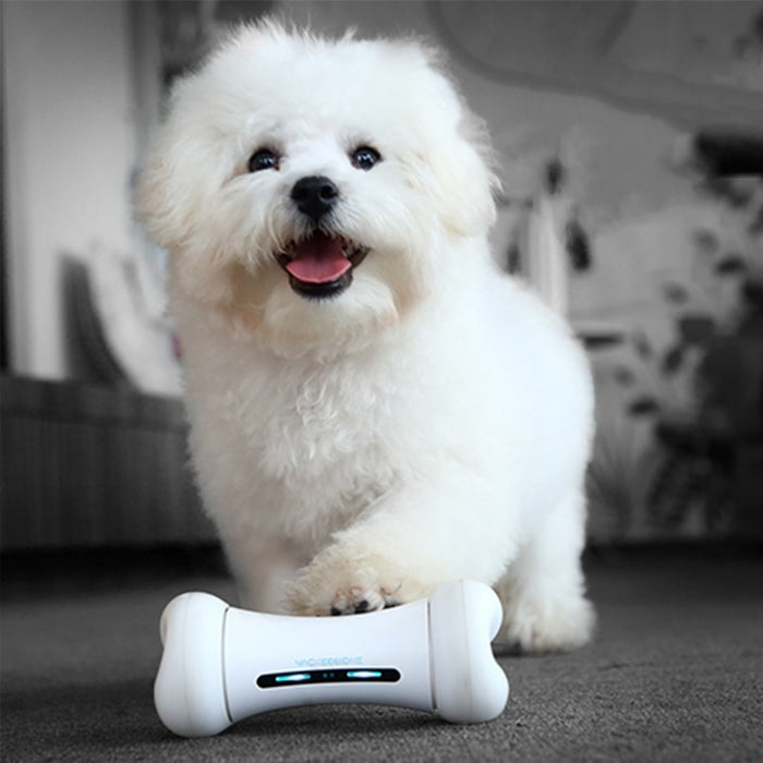 Smart Emotional Interaction Bone Toy - Gadget World