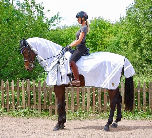 Rider on horse wearing white ride on fly rug beatbugz with a tail flap and detachable neck