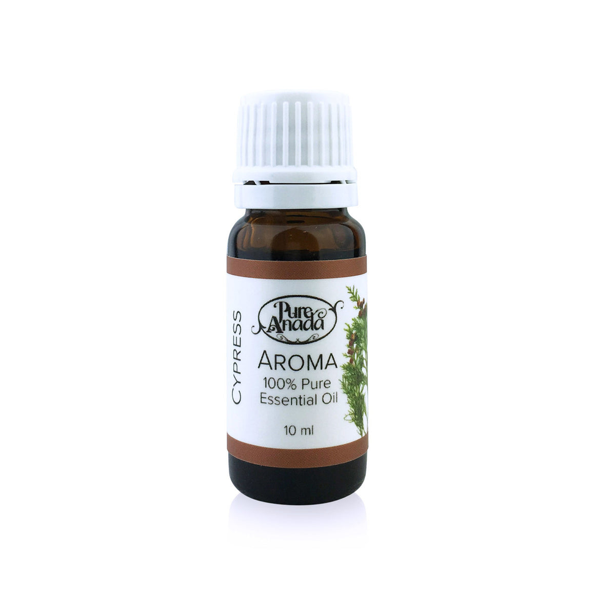 Cypress Aroma - Essential Oil 10ml-PureAnada-Live in the Light