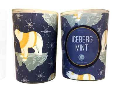 Iceberg Mint Glass Tumbler with Sleeve 6oz-Way Out Wax Candles-Live in the Light