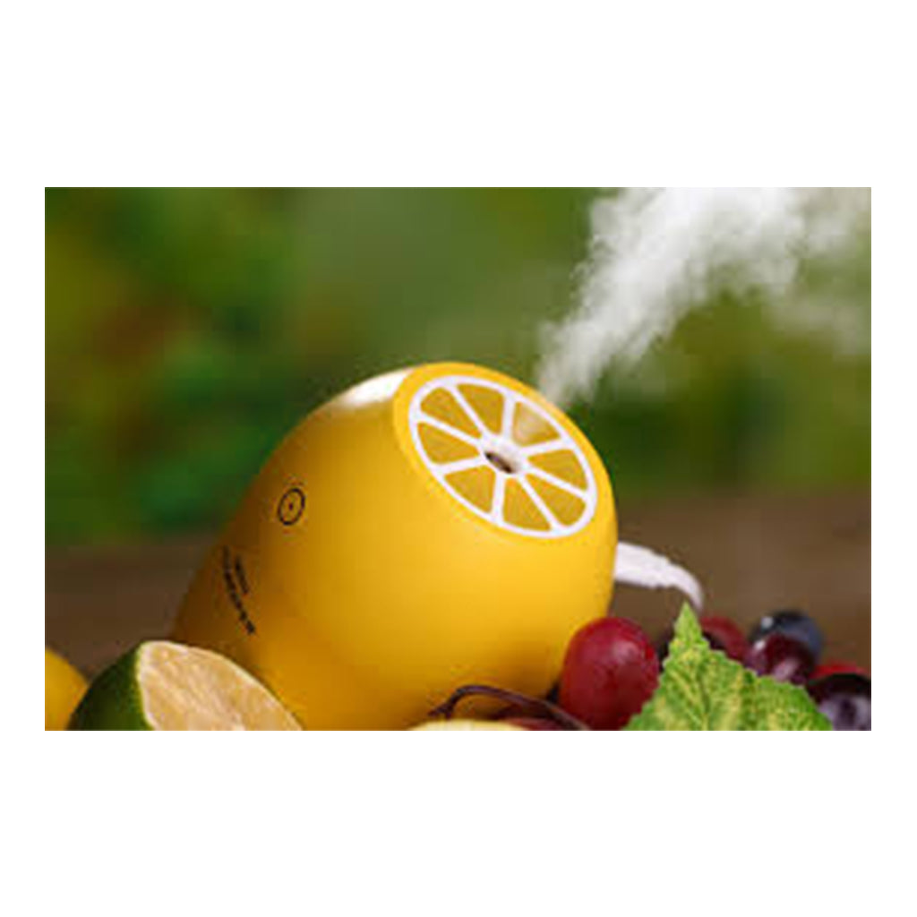 Essential Oil Diffuser with in car USB - 180ML
