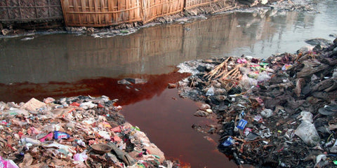 Polluted water near tanneries in Bangladesh