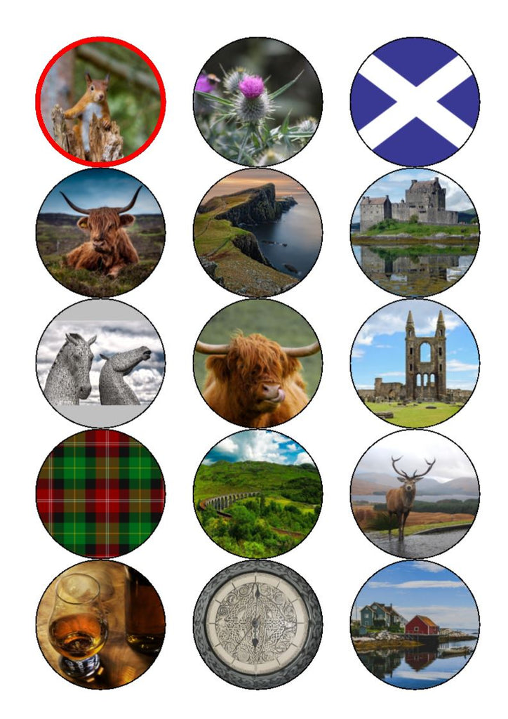 St Andrew's Day Mix Cupcake Toppers