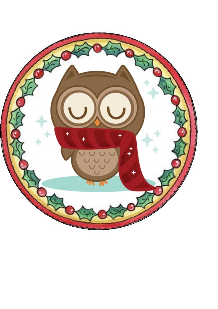 Christmas Owl Cupcake and Cake Toppers