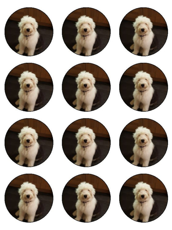 Old English Sheepdog Edible Cake & Cupcake Toppers