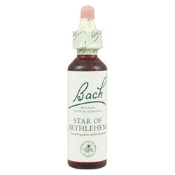 Bach Flower Remedy - Star of Bethlehem