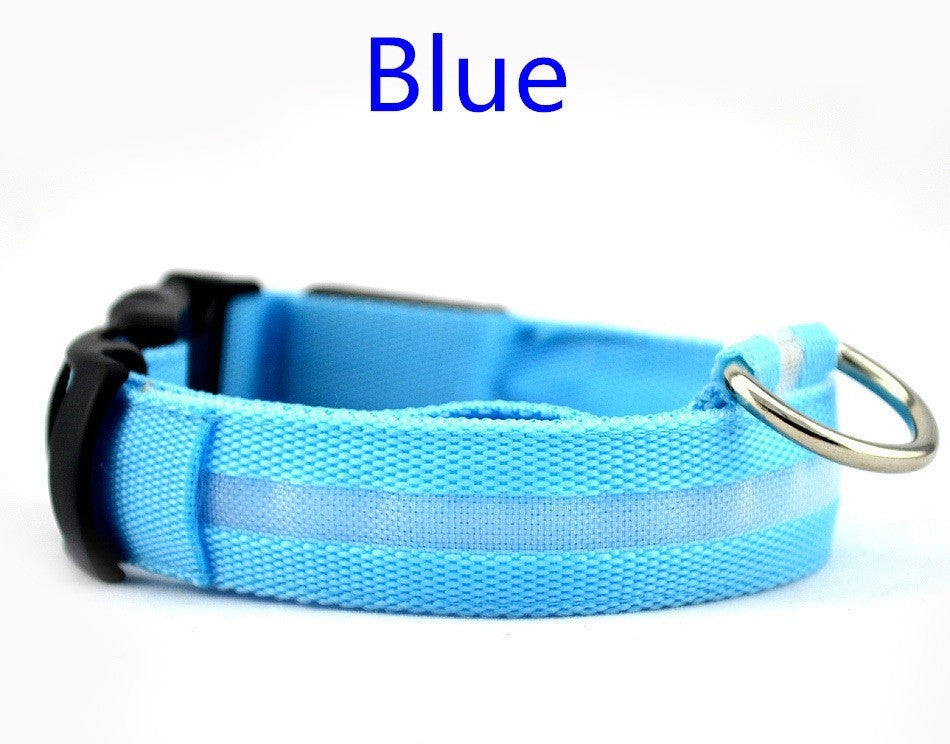 LED Dog Collar  -- Bonus Offer